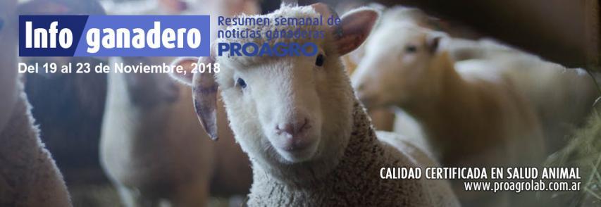 Argentina exportará semen bovino y bubalino congelado a Pakistán