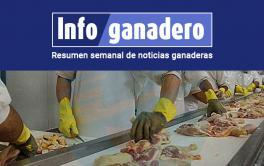 (Español) Otro mercado abierto: por primera vez, Argentina exportó carne de pollo a Canadá