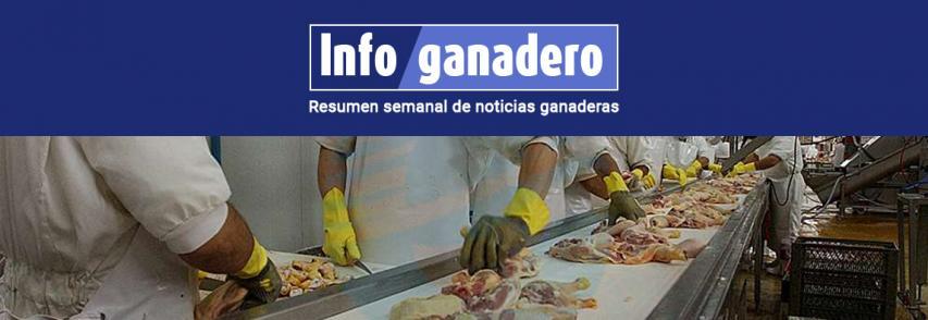Otro mercado abierto: por primera vez, Argentina exportó carne de pollo a Canadá
