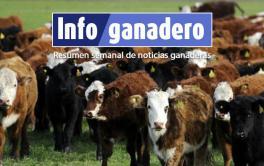 (Español) La Pampa. Advierten sobre casos de carbunclo