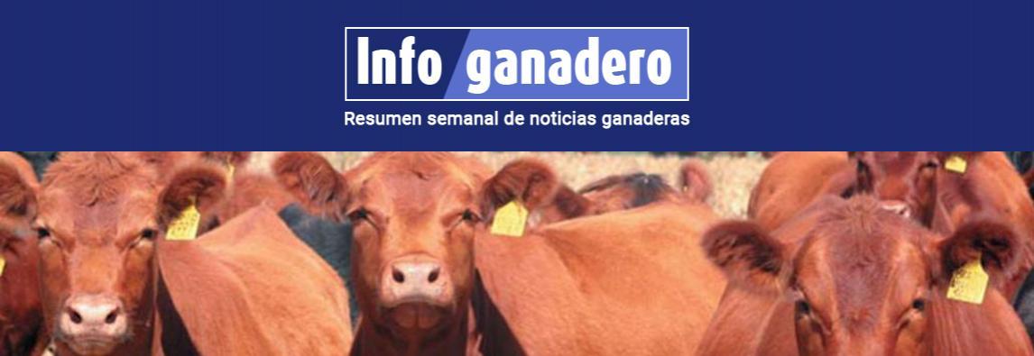 (Español) Es récord la faena de vacas y China ya se lleva 2 de cada 3 kilos de carne