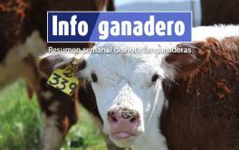 Argentina triplica el número de inseminación artificial respecto a Estados Unidos