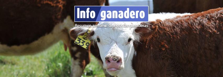 (Español) Argentina triplica el número de inseminación artificial respecto a Estados Unidos
