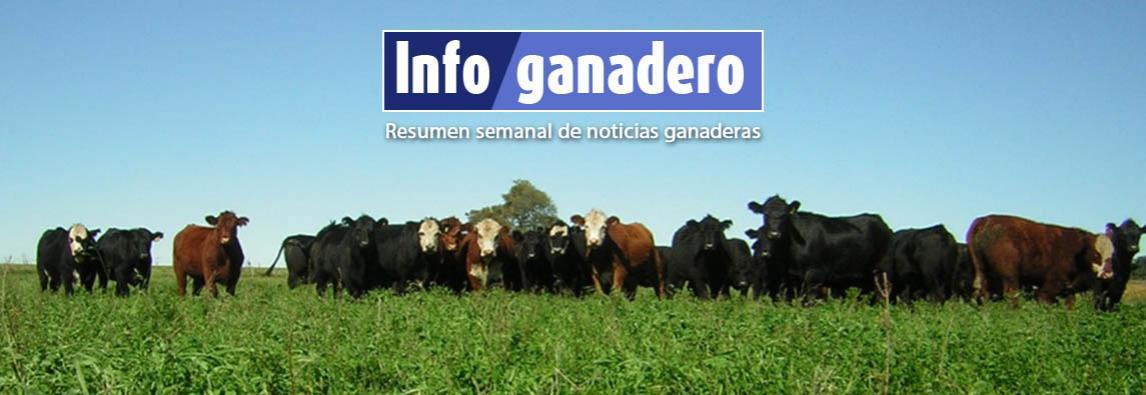 (Español) Cuántos empleos dependen del agro en Argentina