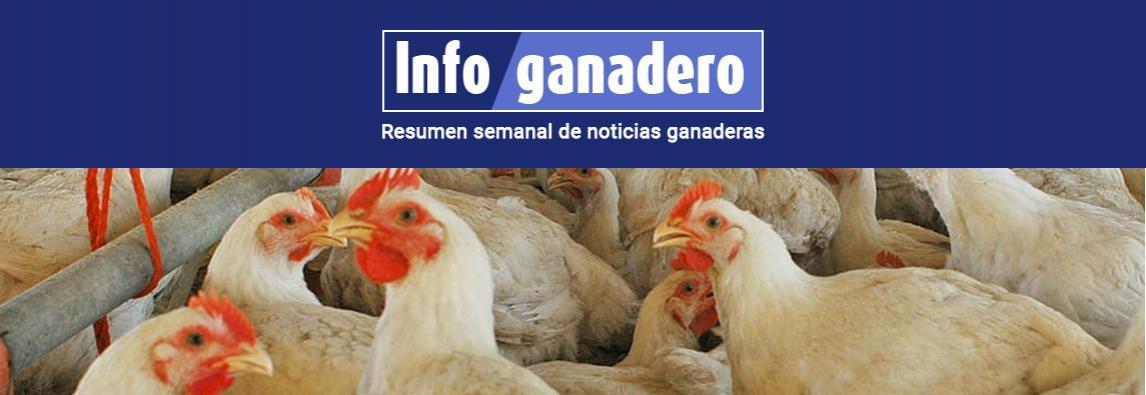 (Español) Avicultura: una oportunidad para cambiar la matriz productiva