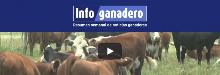 (Español) Recomendaciones sanitarias para el ganado en condiciones de exceso hídrico