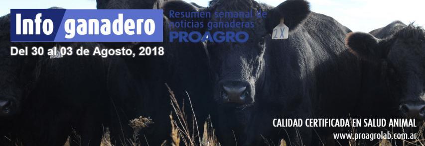 Buenos Aires: en el 2017 no hubo brotes de carbunclo