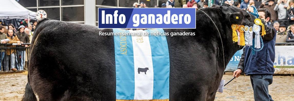 (Español) La Asociación Angus ya brinda a sus socios servicio de evaluación genómica