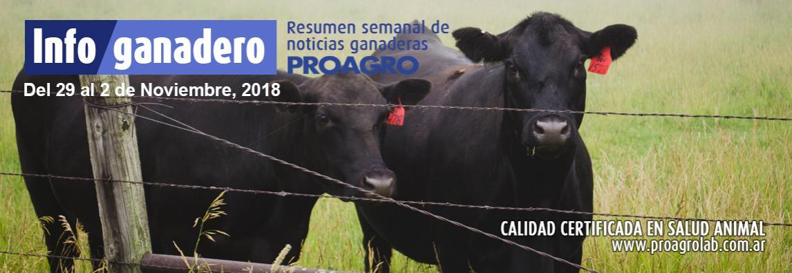"""Estudian la respuesta de """"gemelos"""" bovinos a distintas fechas de destete"""