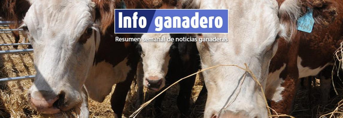 (Español) Senasa publicó los requisitos sanitarios para exportar carne a China