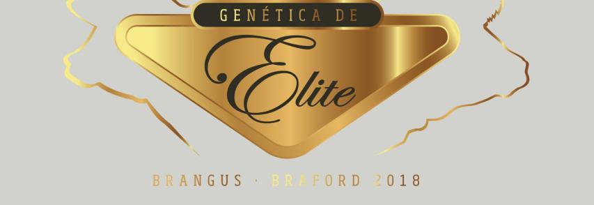 Un año más en Remate Genética de Élite