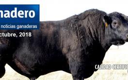 (Español) La producción mundial de carne crecerá 20 por ciento para 2030, según la FAO