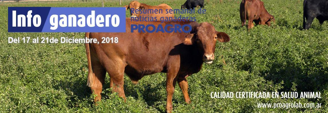 (Español) Lo que se espera para la ganadería del 2019