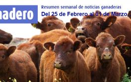 (Español) Asistencia para los ganaderos inundados