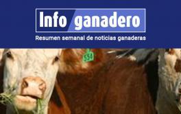 (Español) Zona de riesgo: Observaciones frente a la hemoglobinuria