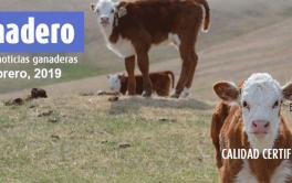 Once toneladas de carne bovina viajan a las góndolas norteamericanas