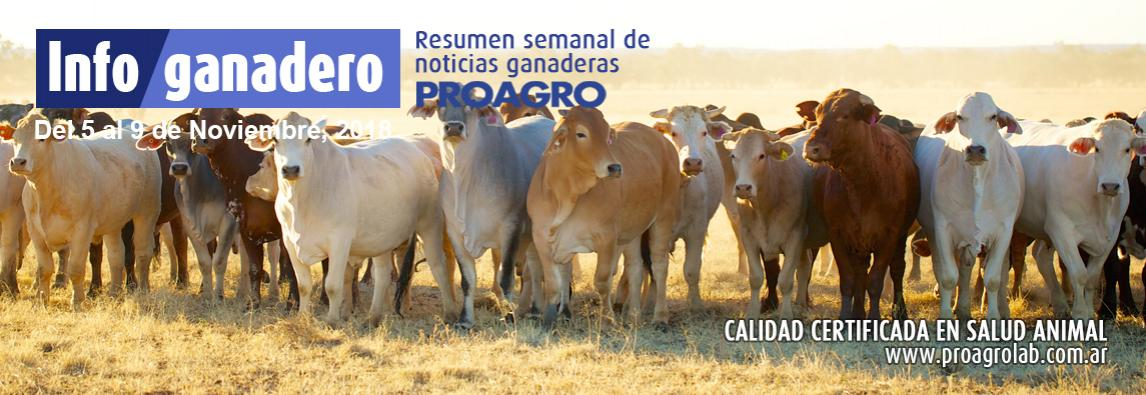 La ganadería argentina pierde $28.000 millones al año por problemas sanitarios