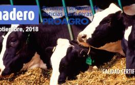 (Español) Carne argentina al mundo: las exportaciones crecieron 72% en volumen y 55% en valor