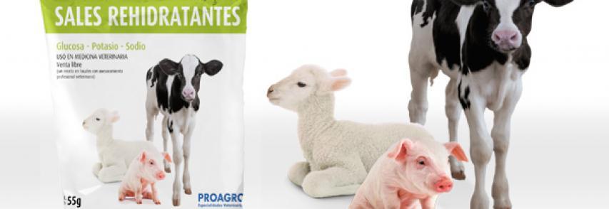 ¿Sabía ud… que lo primero ante un cuadro de diarrea es darle a su animal Sales Rehidratantes?