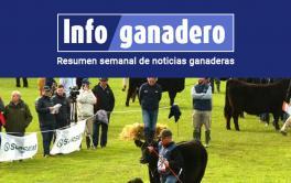 (Español) Llega la Exposición Nacional Angus de otoño