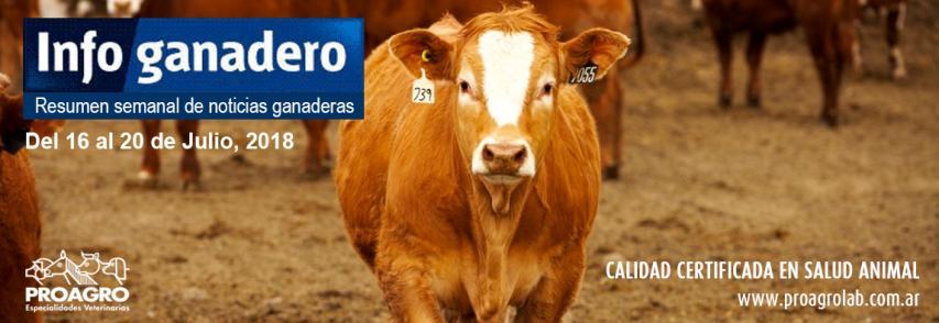 Argentina volvió al top ten mundial de la exportación de carne y apunta al quinto lugar para 2020