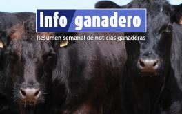 (Español) Técnicos chinos visitarán Argentina antes de fin de año para acordar la venta de bovinos en pie
