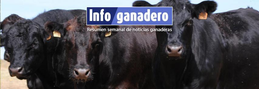 Técnicos chinos visitarán Argentina antes de fin de año para acordar la venta de bovinos en pie