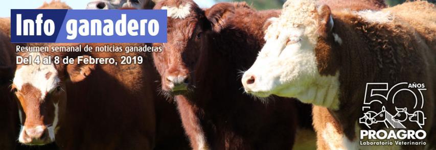 Las exportaciones de lácteos crecieron más del 38% en 2018
