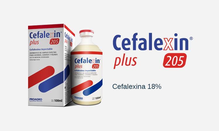 Cefalexin Plus 205