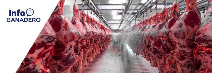 Coronavirus. Las exportaciones de carne vacuna se derrumbaron un 32,8%