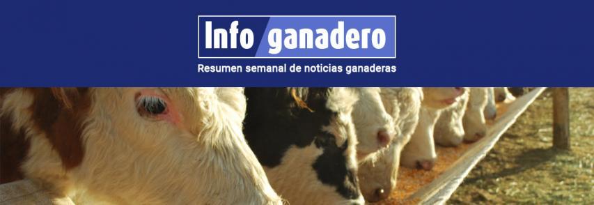 (Español) Ganadería, lácteos y granos: cuáles son los desafíos de cada sector