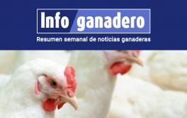(Español) Entre Ríos estudiará al virus mundial que afecta la producción avícola