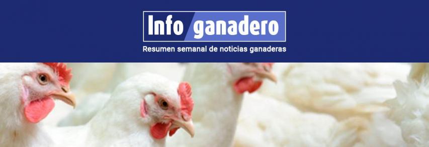 Entre Ríos estudiará al virus mundial que afecta la producción avícola
