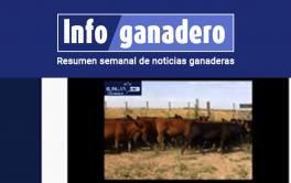 (Español) El Rosgan lanza una app para compra-venta online de hacienda
